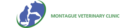 Montague Vet Clinic